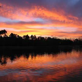 Natalya Shvetsky - Sunset At the Lake