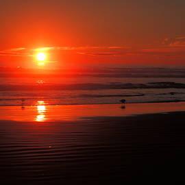 Jeff Swan - Sunset on the beach