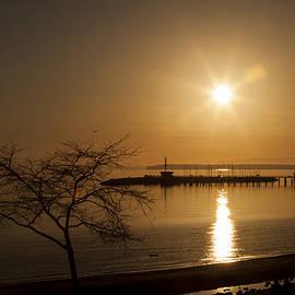 Monte Arnold - Sunset On The Boardwalk 2