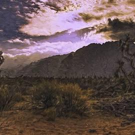 David Kehrli - Sunset on the Desert Cacti