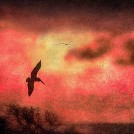 William Beuther - Sunset Soaring II