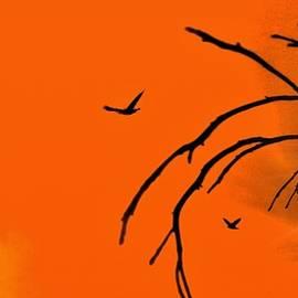 Romuald  Henry Wasielewski - Sunset Time