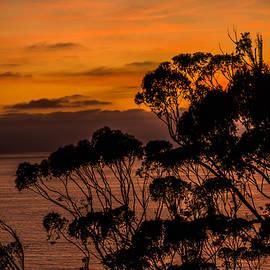 Bruce Pritchett - Sunset /Torrey Pines Image 2