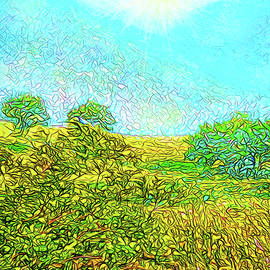 Joel Bruce Wallach - Sunshine Mountain Meadow - View Of Colorado Front Range