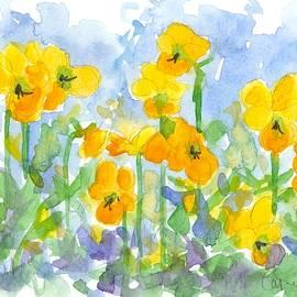 Cathie Richardson - Sunshine Pansies