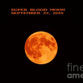 Linda Troski - Super Blood Moon