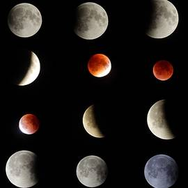 Dan Comeau - Super Moon Eclipse Full set