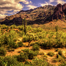 Roger Passman - Superstition Mountain and Wilderness