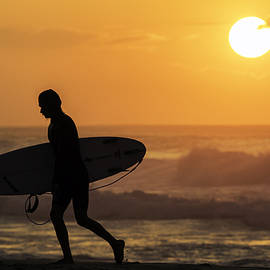 James Roemmling - Surfer Silhouette
