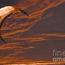 Terri  Waters - Surreal Surfing orange