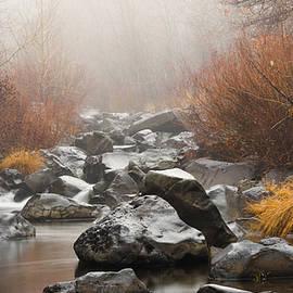 Mellissa Ray - Susan River