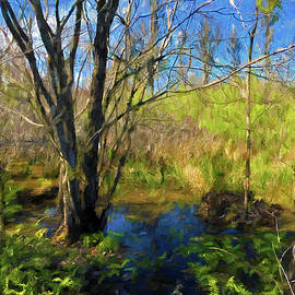George Voyajolu - Swamp at Brooker Creek