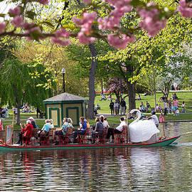 Allan Morrison - Swan Boats