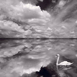Steve Gadomski - Swan Lake Explorations B W