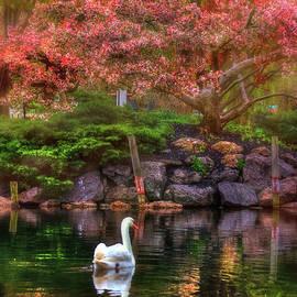 Joann Vitali - Swans in the Boston Public Garden