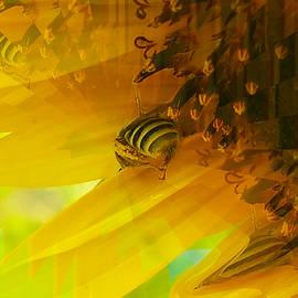 Steven Fresquez - Swarm of Bees