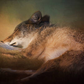 Jordan Blackstone - Sweet Dreams - Wildlife Art