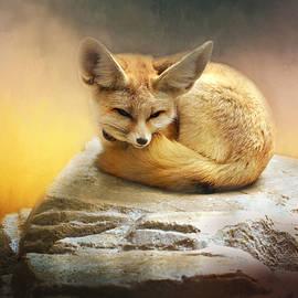 Lynn Bauer - Sweet Lil Fennec Fox