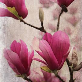 Rene Crystal - Sweet Pink Magnolia...