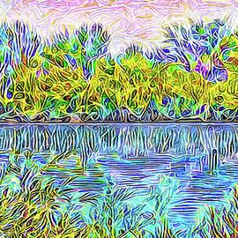 Joel Bruce Wallach - Swirl Pond Indigo - Lake In Boulder County Colorado