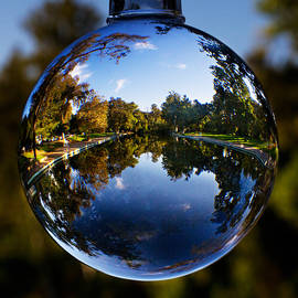 Robert Woodward - Sycamore Pool Through A Glass Eye