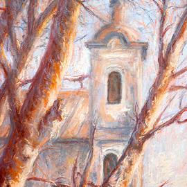 Dusan Balara - Sycamore Tree