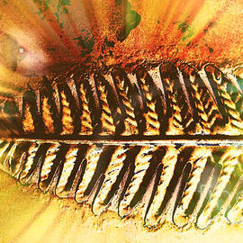 Gayle Price Thomas - Tail Feather
