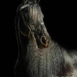 Jan Galland - Tall Dark and Handsome