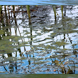 Gretchen Wrede - Tall Grasses Reflection in Pond Impressionist