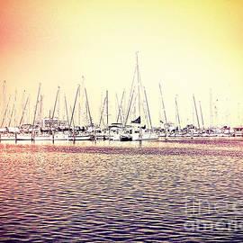 Chris Andruskiewicz - Tampa Bay Marina