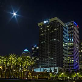 Lanis Brett Ossman - Tampa Skyline