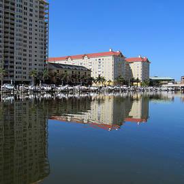 Tina M Wenger - Tampa skyline