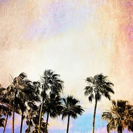 Brenda Conrad - Tangerine Dreams