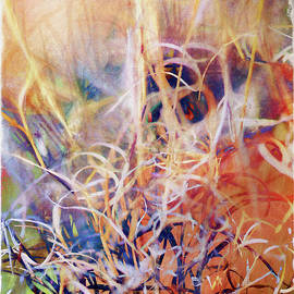 Sheryl Karas - Tangled Desert Grass on a Windy Day Abstract
