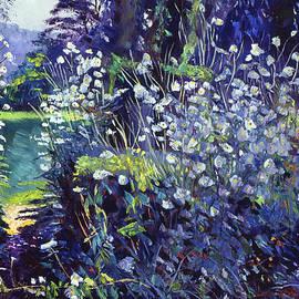 David Lloyd Glover - Tangled White Flowers