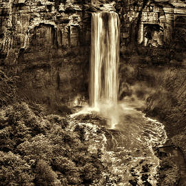 Stephen Stookey - Taughannock Falls - Sepia