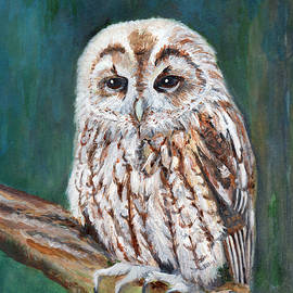 Veronica Rickard - Tawny Owl