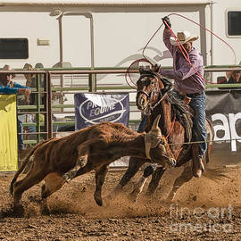 Priscilla Burgers - Team Roping at Wickenburg Senior Pro Rodeo