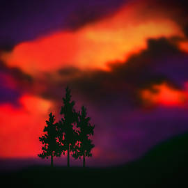 Kathy Franklin - Tempestuous Sky