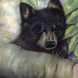 Annamarie Sidella-Felts - Tennessee Wildlife Black Bear