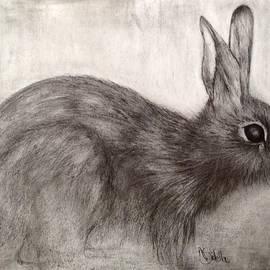 Annamarie Sidella-Felts - Tennessee Wildlife Cottontail Rabbit