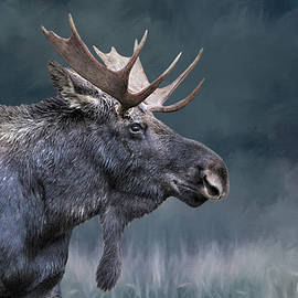 Donna Kennedy - Teton Moose