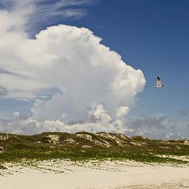 Cynthia Stephens Sanders - Texas Beach Sky