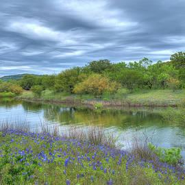 Lynn Bauer - Texas Bluebonnets at Lake Travis