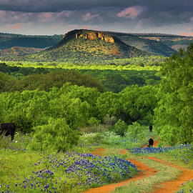 Texas Hill Country Ranch Road - Darryl Dalton