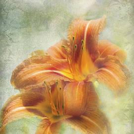 Diane Hawkins - Textured daylilies