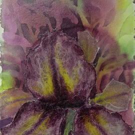 Carolyn Rosenberger - Textured Iris