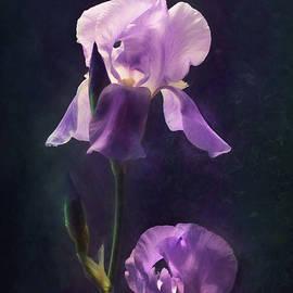 Lori Deiter - Textured Iris