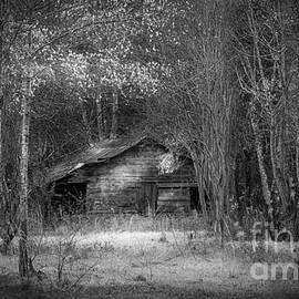 Marvin Spates - That Old Barn-bw