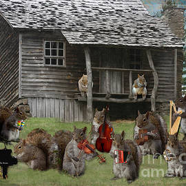 Sandra Clark - The Acorn Squirrel Band